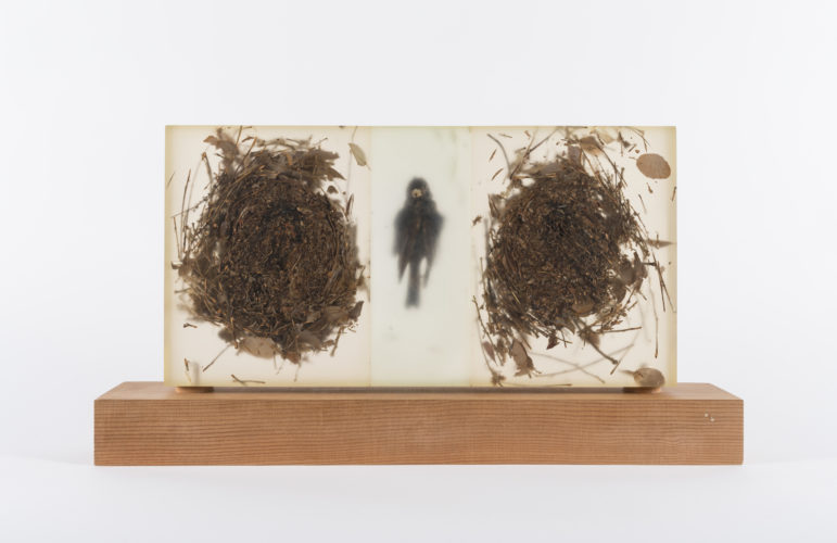Mayme Kratz, Solo Flight, 1995. Cast resin, found objects, wood, 12 x 22 x 6 inches. Collection of Scottsdale Museum of Contemporary Art.