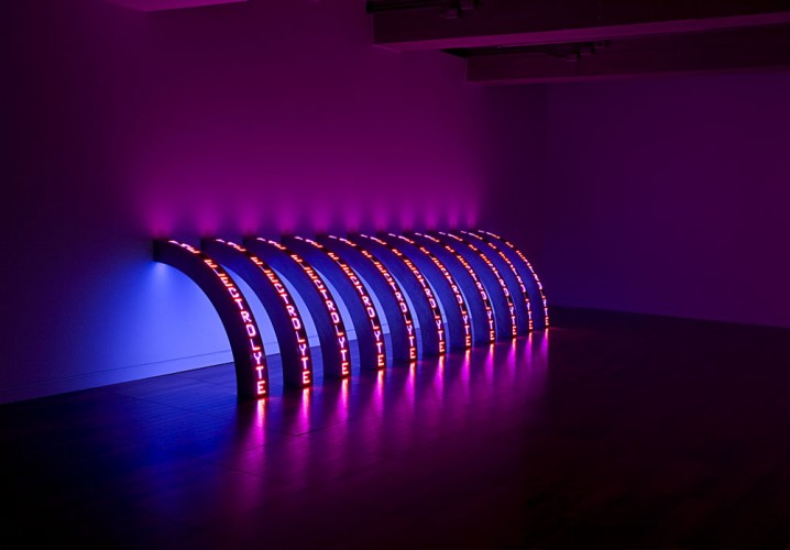 Jenny Holzer, Ribs, 2010. Eleven LED signs with blue, red and white diodes, text: US government documents, 58 1/4 x 5 1/4 x 5 3/4 inches each. Courtesy of the artist and Cheim & Read, New York. © 2010 Jenny Holzer, member Artists Rights Society (ARS), New York. Photo: Richard-Max Tremblay