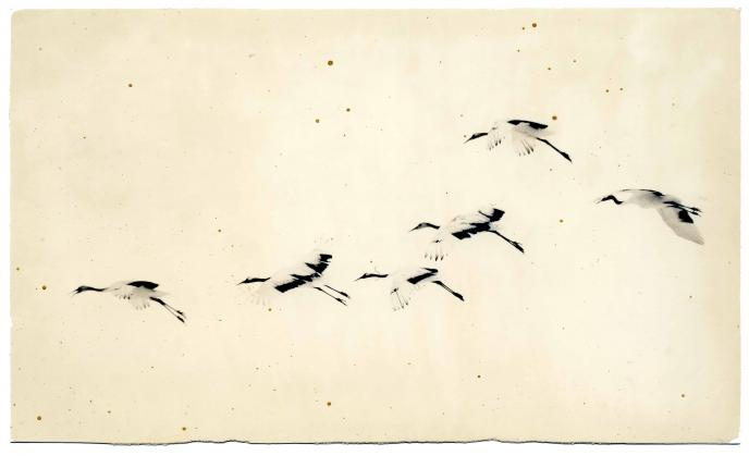 "Masao Yamamoto, Untitled, n.d. from the series ""Nakazora."" Gelatin-silver print, dimensions variable. Courtesy the artist and Robert Koch Gallery, San Francisco, CA. © Masao Yamamoto"