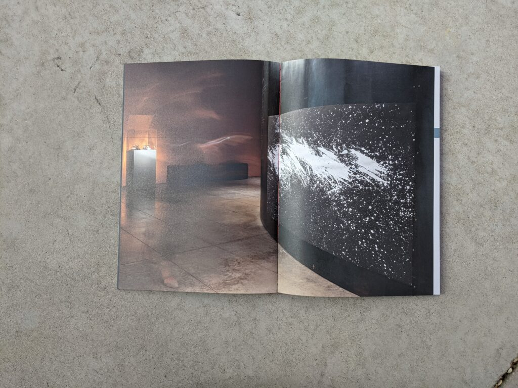 Interior page of Counter-Landscapes catalog featuring artwork by Ana Teresa Fernández