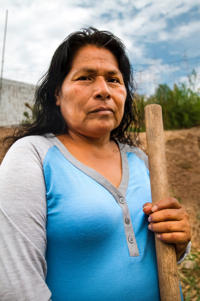 Doña Trinidad Brasil Anguamea from the Mexican Woman's Post-Apocalyptic Survival Guide in the Southwest: Food, Clothing, Shelter, y La Migra series, 2019